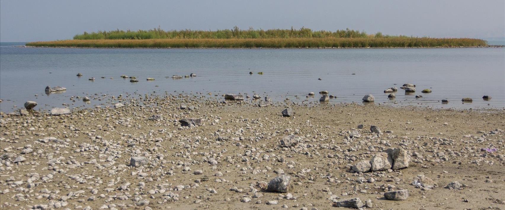 האי בכנרת שנחשף בקיץ שעבר