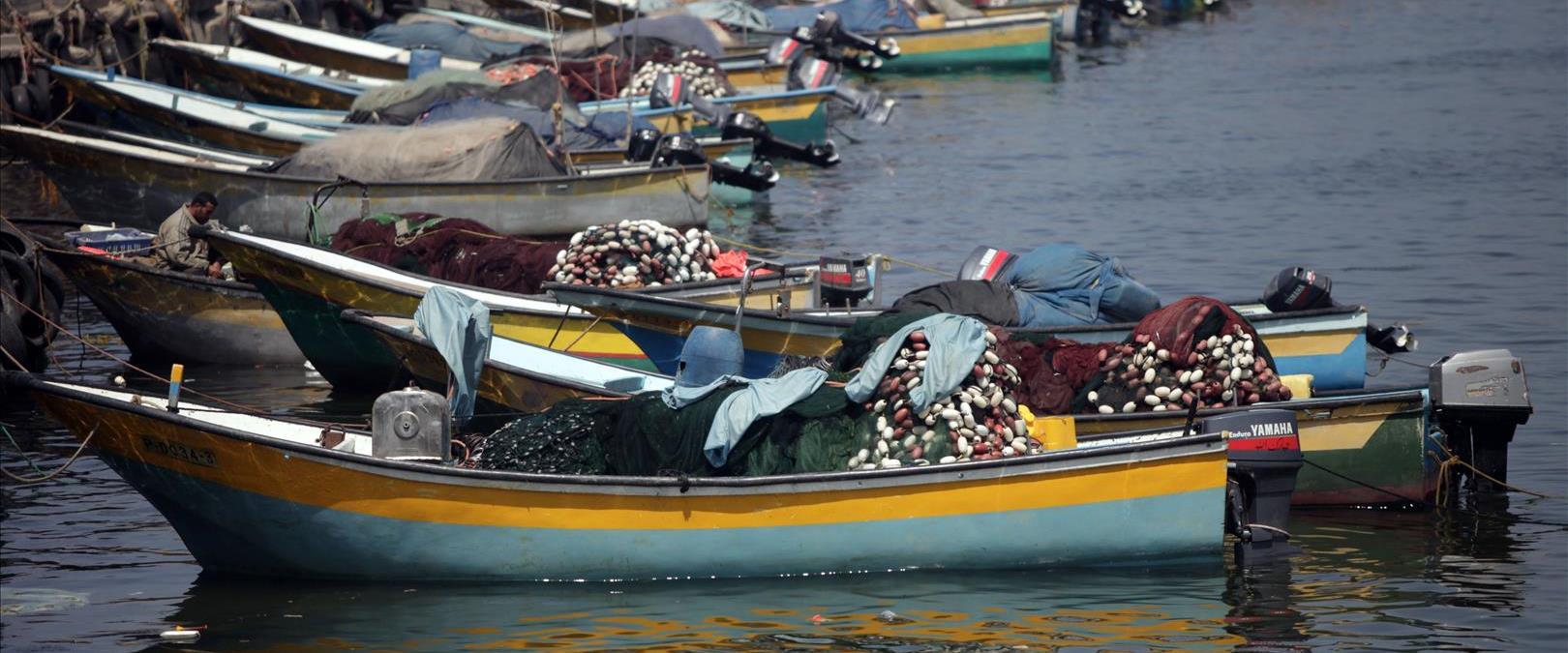 סירות דיג עזה