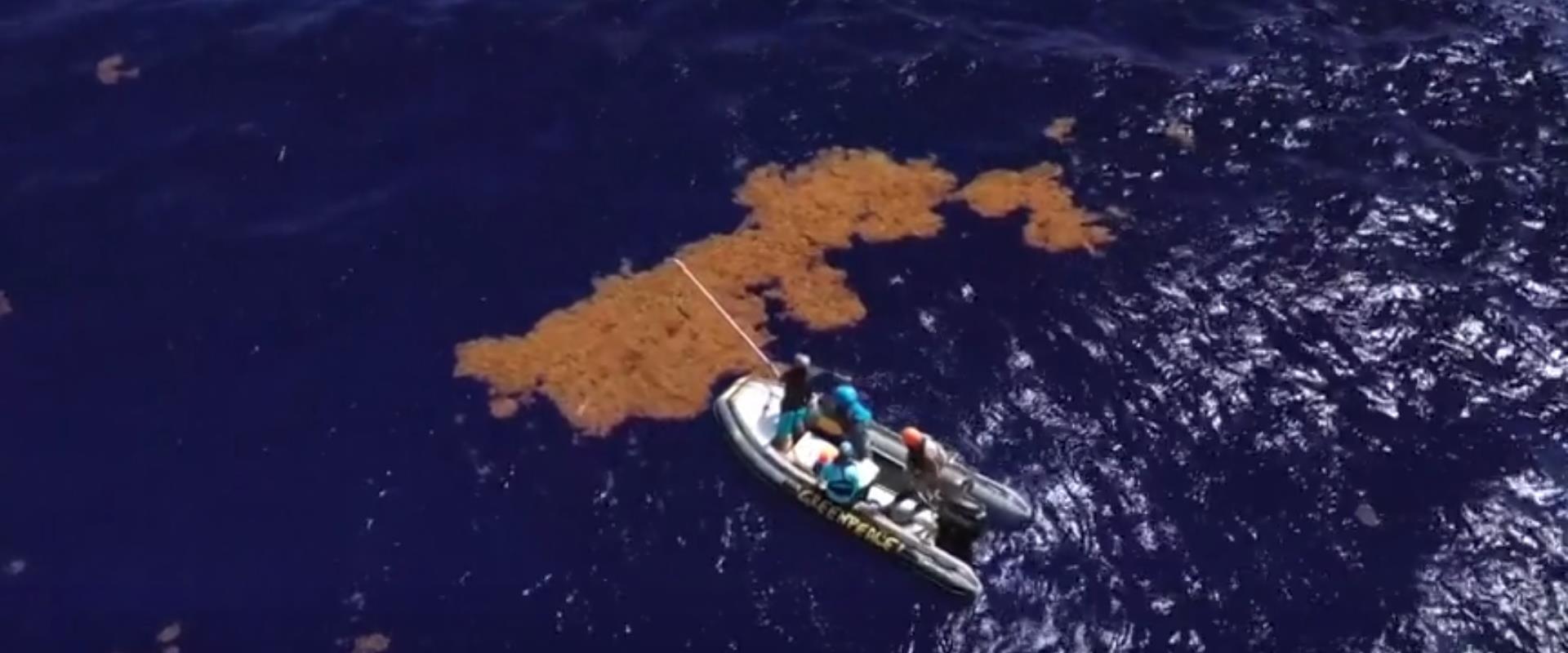 הזיהום בים