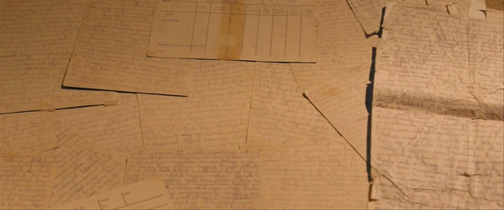 דפים ביומנה של שנדי מילר
