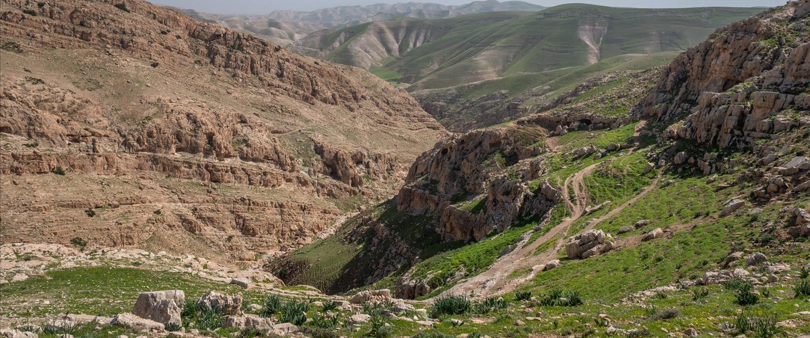 נחל במדבר יהודה
