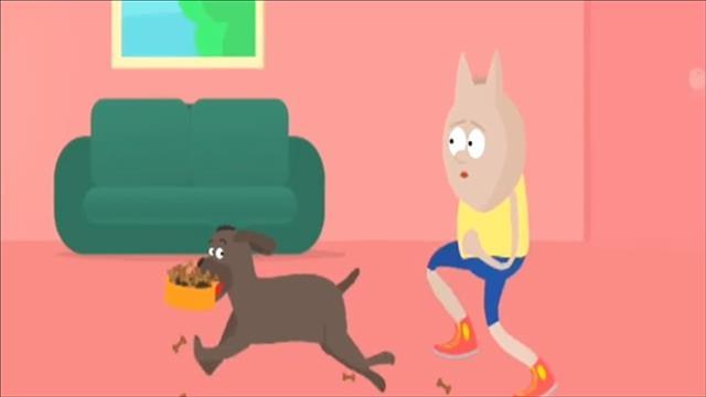 המדריך לאימון הכלב לישיבה ב-6 שלבים