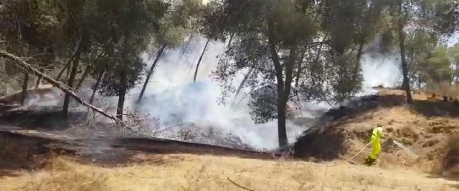 שריפה ביער בארי מבלון תבערה