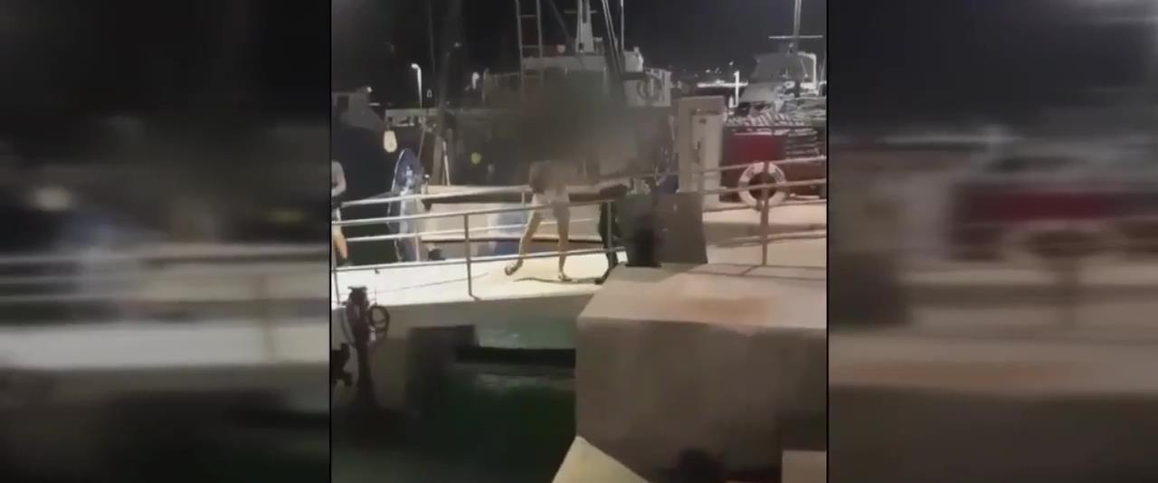 מכות בנמל יפו
