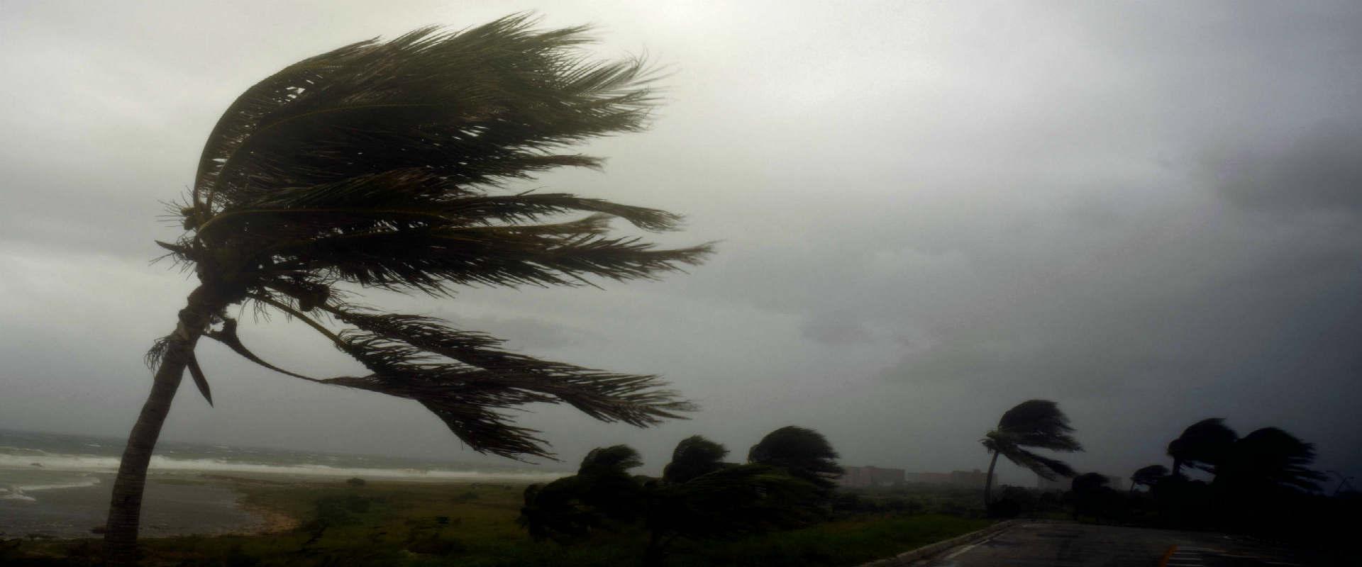 """הוריקן """"אירמה"""""""