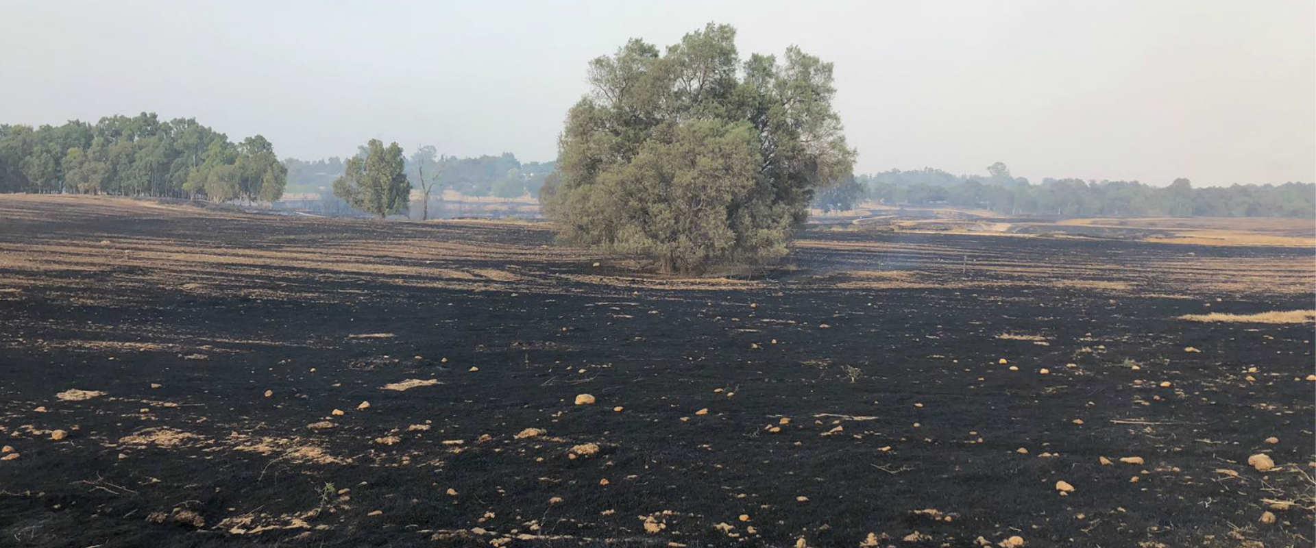 אזור שעלה באש במועצה האזורית אשכול, היום