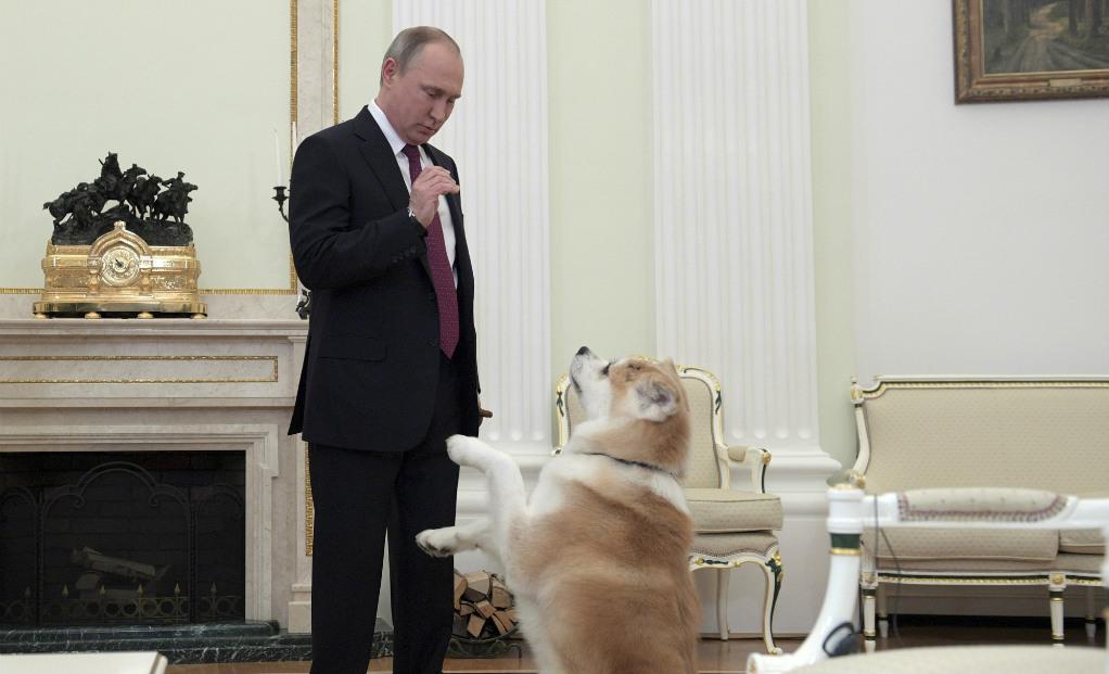 פוטין והכלבה היפנית יומה (צילום: AP)